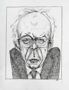 Bernie Sanders - Candidate Democratic Primary Elections