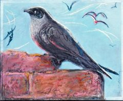 Chimney Swift - Pastel Drawing